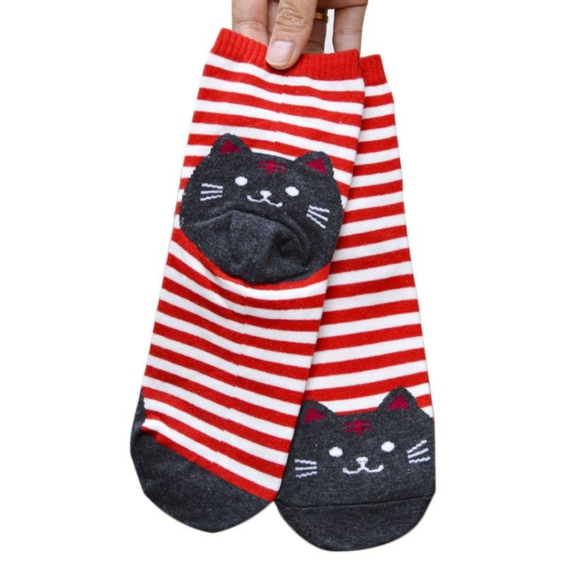 Chaussette chat5